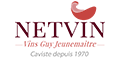 Logo boutique Netvin